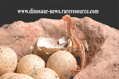 Dinosaur egg