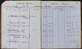 Olive Tree Genealogy Blog: Featured Database: Irish Valuation Revision Books 1864-1933