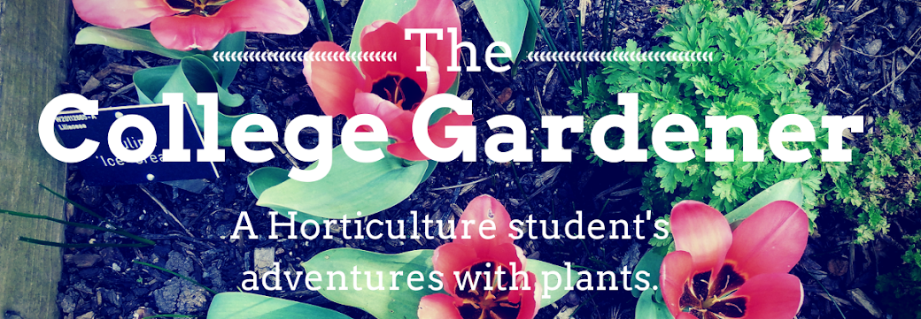 The College Gardener