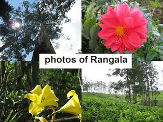 Rangala,Sri Lanka
