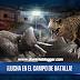 La batalla feroz entre dinosaurios comienza en el juego Jurassic World