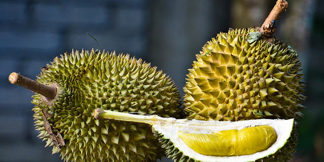 Why Durian is named The King of Fruits