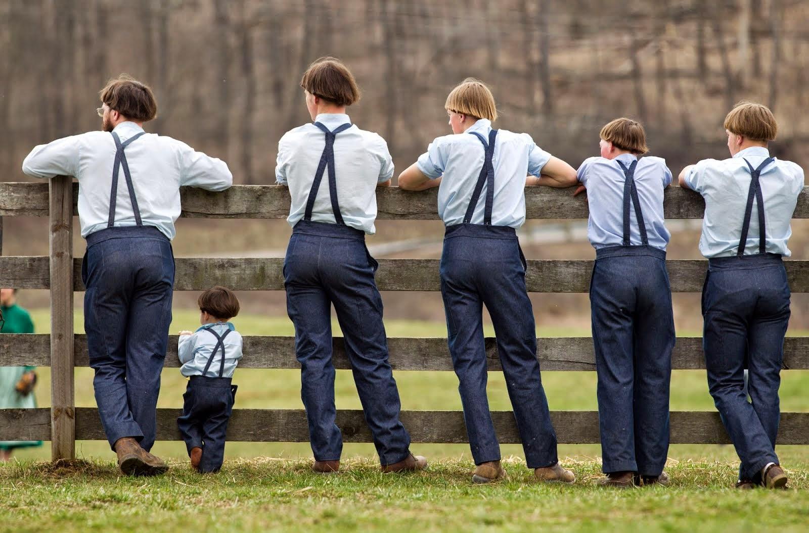 Amish  A Secret Life
