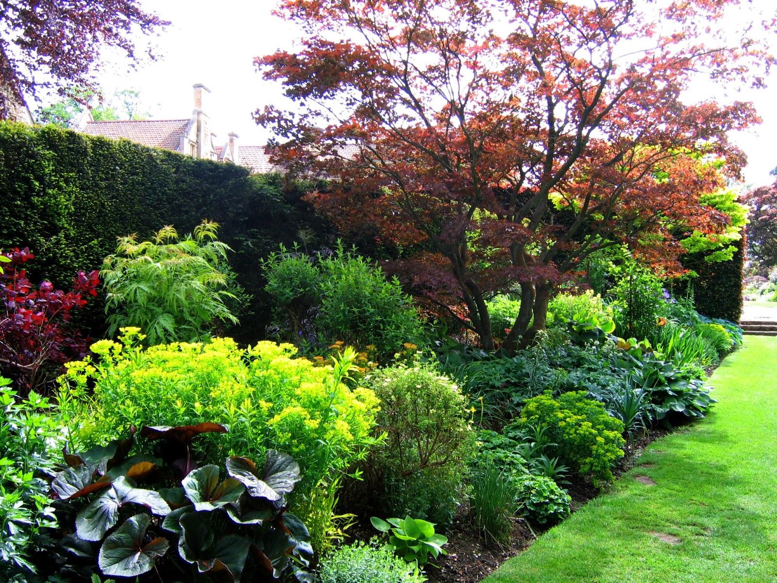 Arte Y Jardiner A Plantas Perennes En El Dise O De Jardines