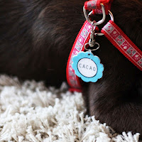 dog tag diy