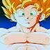 Dragon Ball Z Capitulo 287 HD