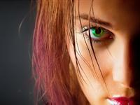 Fantasia painter software edit foto untuk lumia