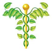 Gesundheit & Wissenschaft