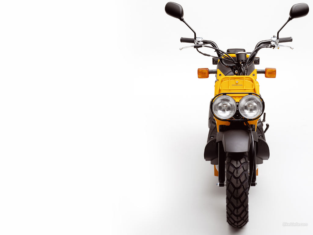 Ausgezeichnet Honda Ruckus Rahmen Mit Titel Galerie ...