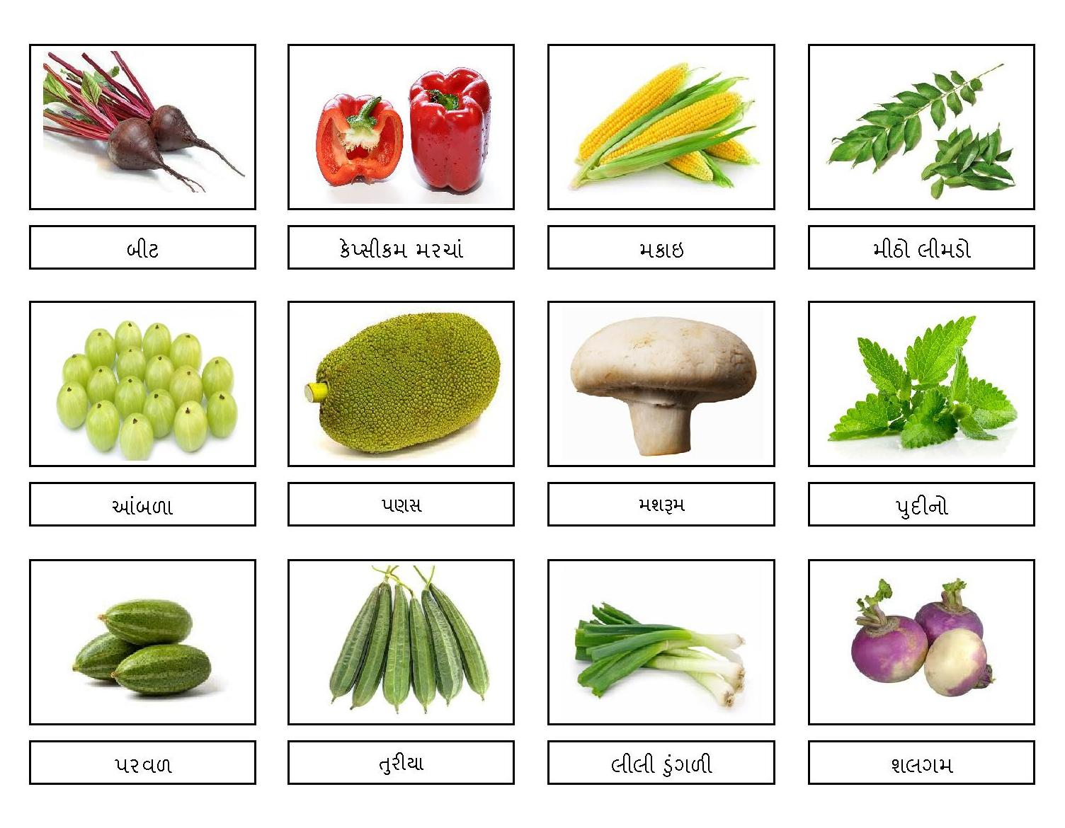 Indian Vegetable Names | www.imgkid.com - The Image Kid ...