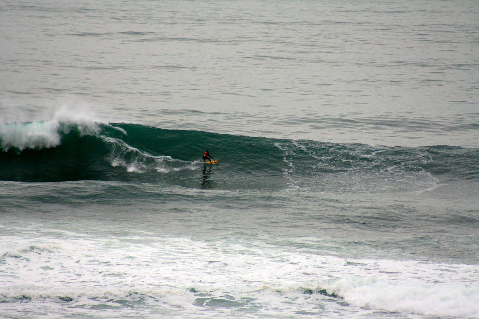Central Coast | Surfunation