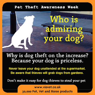Pet Theft Awareness Week, petsnmore.org