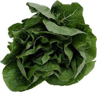 Makanan Penghancur Kolesterol
