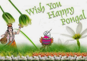Tamil Pongal 2016 Greetings HD Wallpapers Pictures