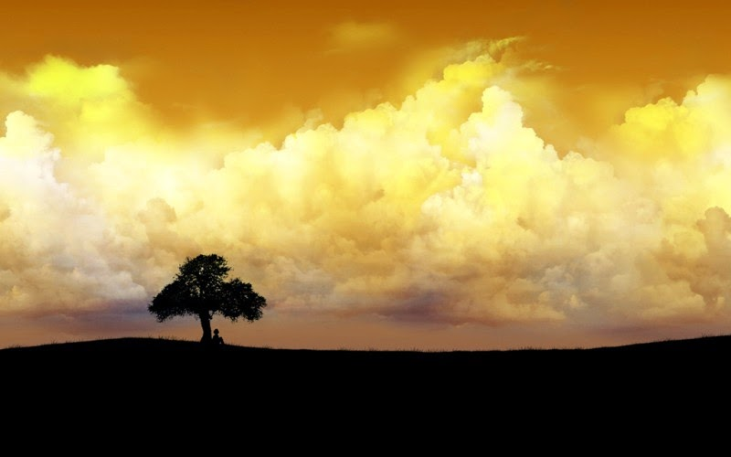 Çölde Bir Ağaç