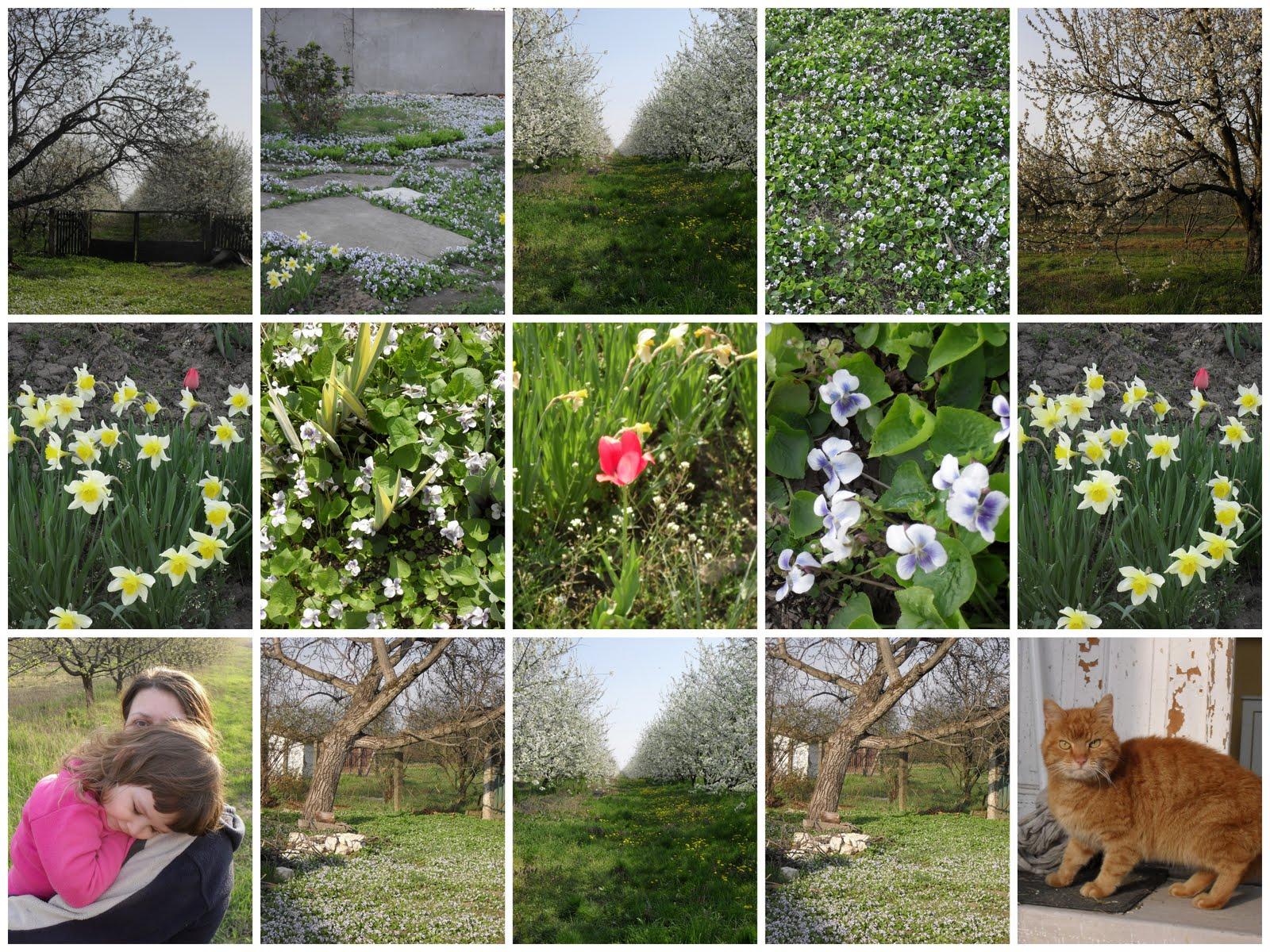 ReKreáció - 2011 Tavasz