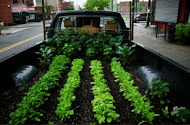Truck Farm Chicago