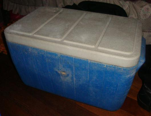 The Alleged Cooler