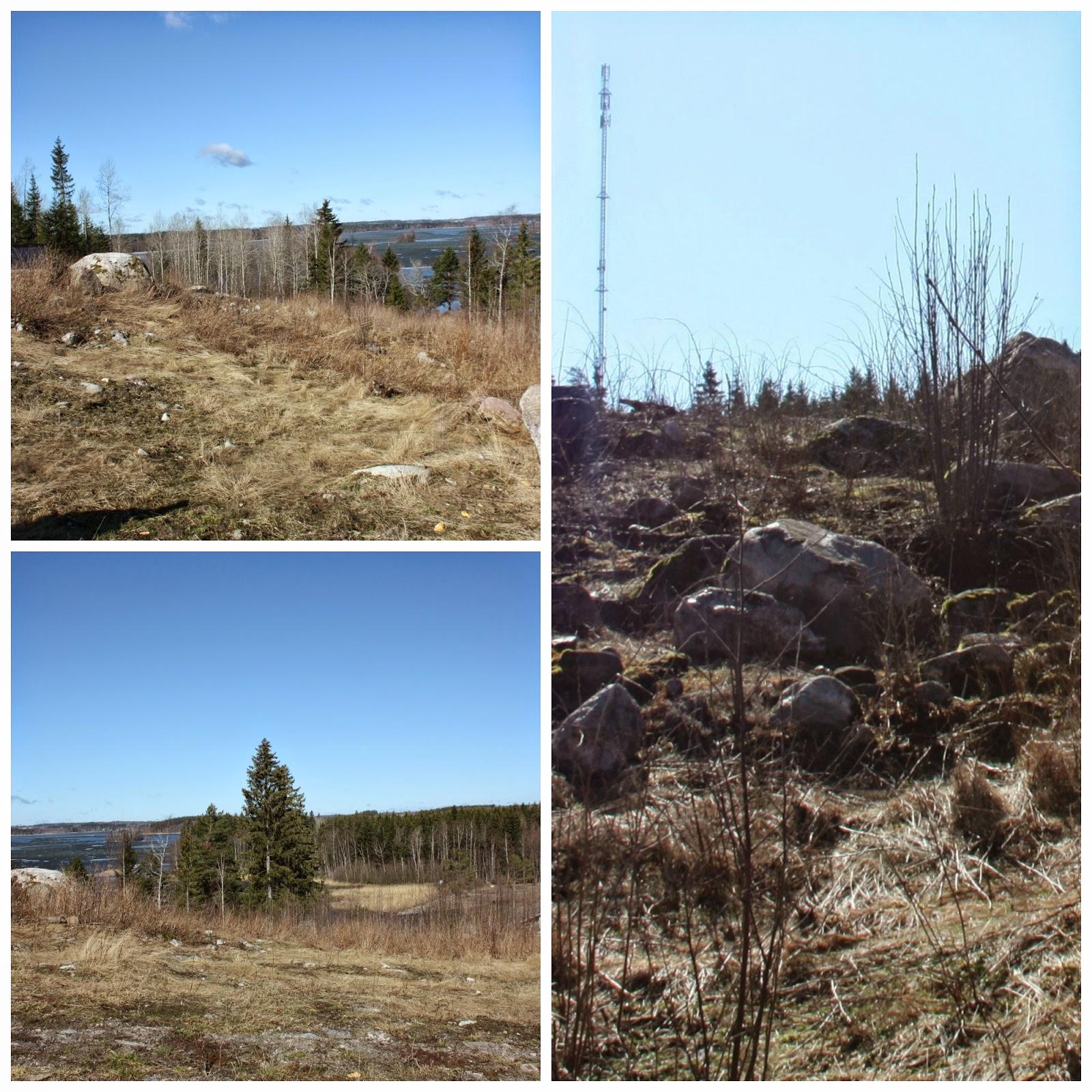 Puuta ja kiveä -raksablogin tontti ennen maatöitä