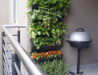 recykling skrzynki na zioła