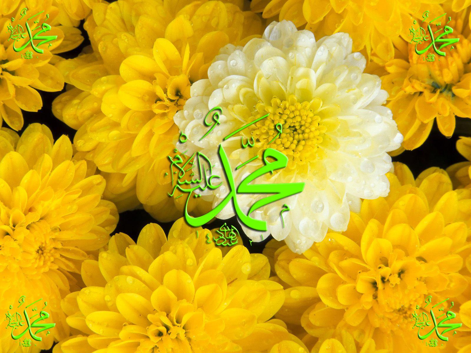 http://2.bp.blogspot.com/-P6bk63GXsdI/T14unofGCCI/AAAAAAAAAVs/JAYNgzxPAno/s1600/I+love+Muhammad+%28pbuh%29.jpg