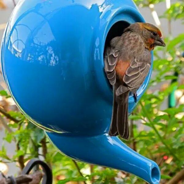 Idée de nid ...