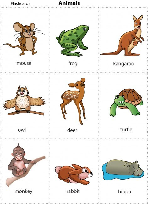 FLASHCARDS FOR KIDS: ANIMAL CARDS FOR CHILDREN