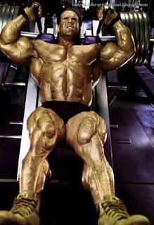 jay _cutler_mister_olympia_body-builder-professional.blogspot.com(40)