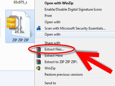 How to extract a zipped file