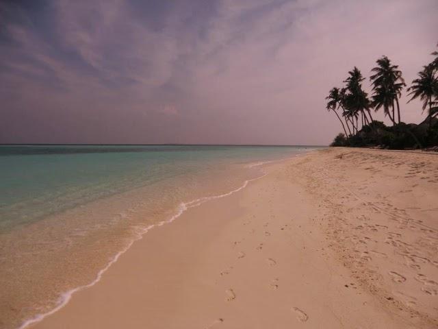 Мальдивы-Пальмы