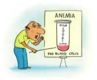 Mengatasi Kurang Darah dengan Ramuan Alami