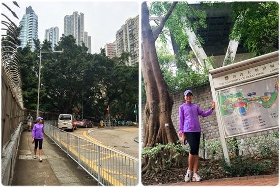 ระหว่างทางไป University of Hong Kong