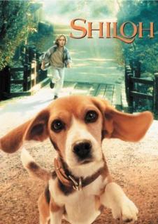 Mi Amigo Shiloh (1996) Online