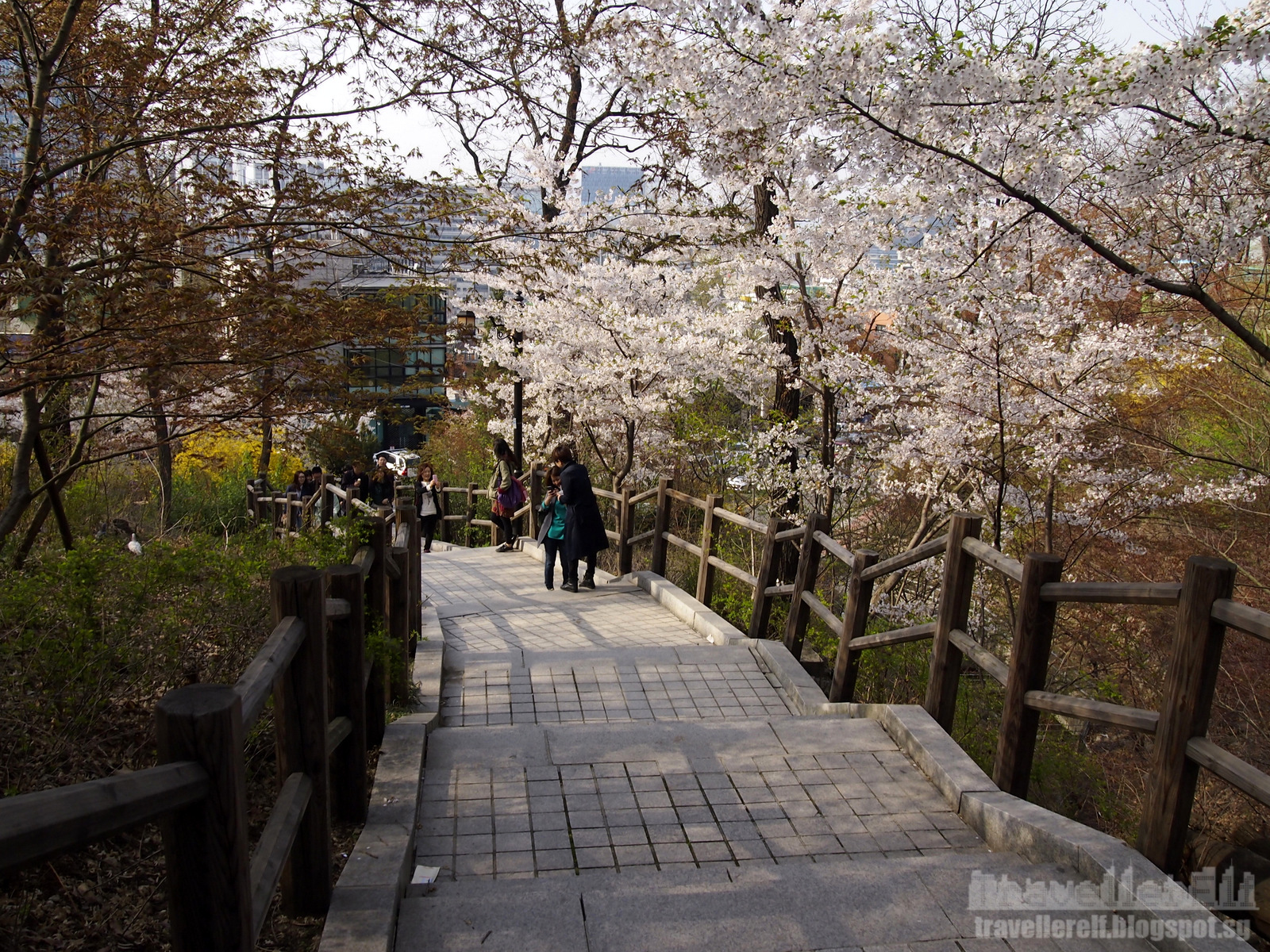 Namsan Park - Seoul (남산공원 (서울)) | Official Korea Tourism ...