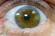 eye know, eye know, eye am such a slacker.