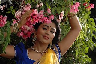 Shriya Saran Hot kannada actress