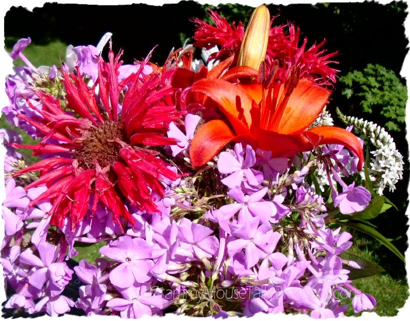 just picked garden flowers - bee balm - phlox photo