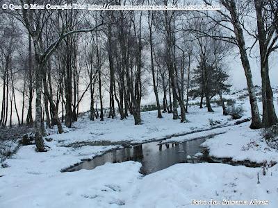 poesias, poemas de amor, amor, Cris Henriques, http://oqueomeucoracaodiz.blogspot.com, O Que O Meu Coração Diz