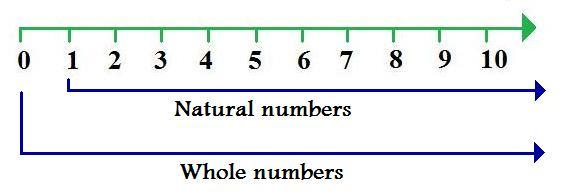 Natural Numbers Vs Whole Numbers Vs Integers