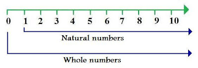 what are natural numbers, what are whole numbers, difference between whole and natural numbers, wiki wikipedia
