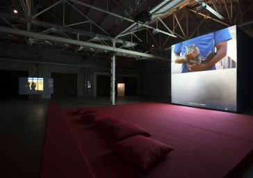 Primitive in Hangar Bicocca a Milano