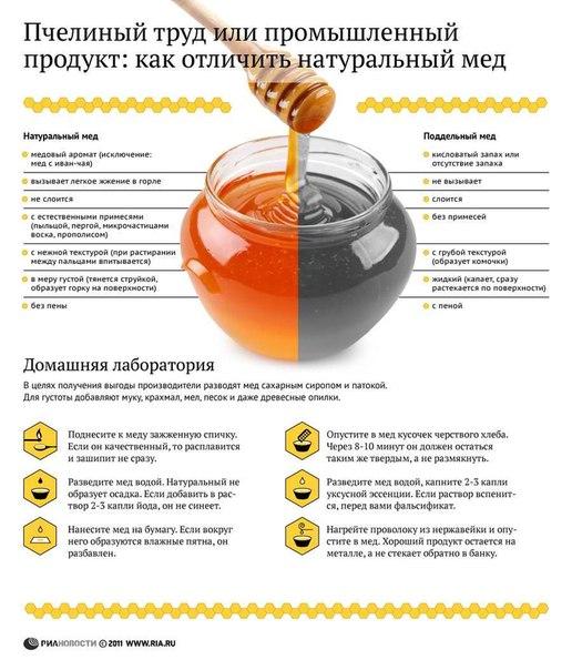 Как отличить натуральный мед от подделки
