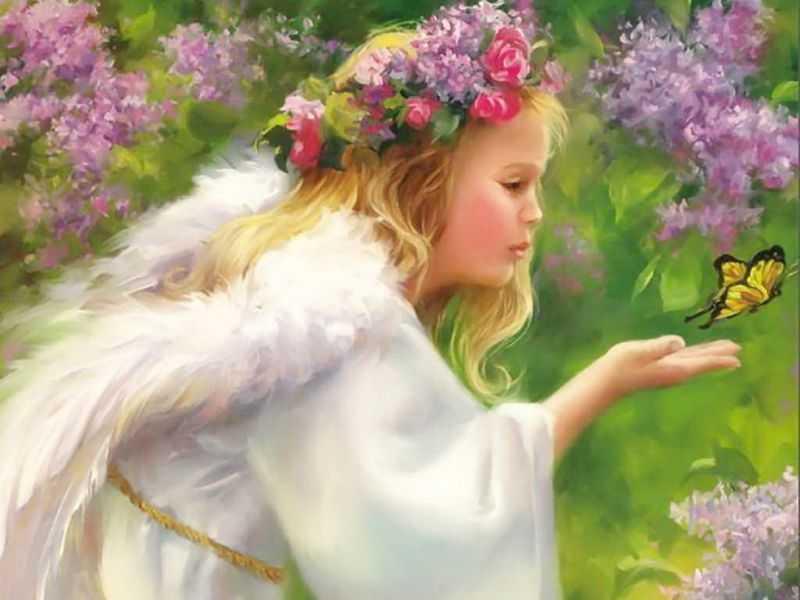 Zoom frases fondos de angeles de diversos tipos for Beautiful in los angeles