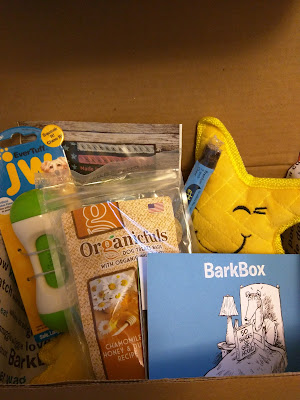 box of dog goodies