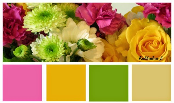 Täältä löydät ohjeen miten tehdään värikartta picmonkey ohjelmalla!