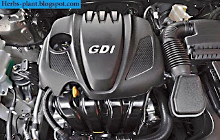 Kia k9 car 2013 engine - صور محرك سيارة كيا k9 2013