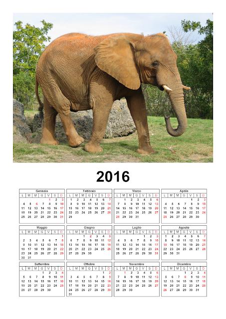 Calendario 2016 - elefante