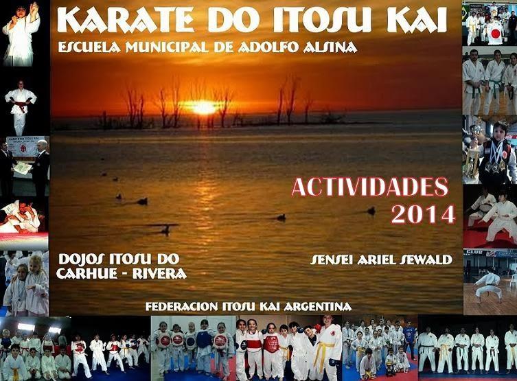 karateactividades2014