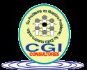 CGI Consultores