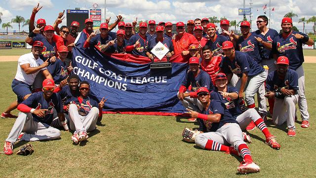 2016 Gulf Coast League Champion Cardinals